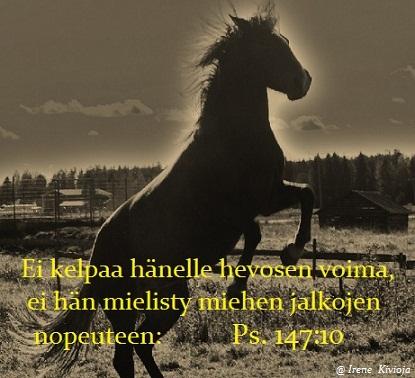 ei kelpaa hevosten voima