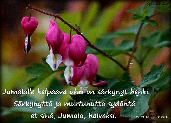 RUUSU_064