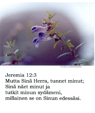 Jeremia_123